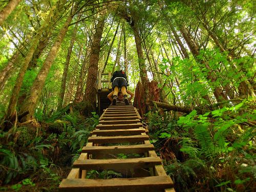 Aller plus haut, toujours plus haut. En n'oubliant pas de regarder à gauche et à droite, comme c'est beau!