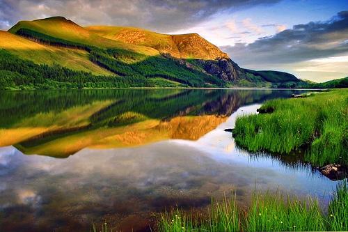 Faire une bonne critique, c'est être comme l'eau d'une aurore d'automne. Calme et claire.