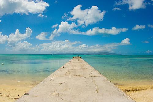Sur l'île de Yaeyama, non loin d'Okinawa. Âgé mais solide !