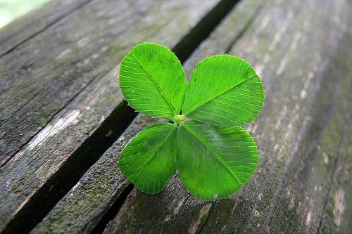 La chance dépend de soi, d'un dieu ou du chaos ?