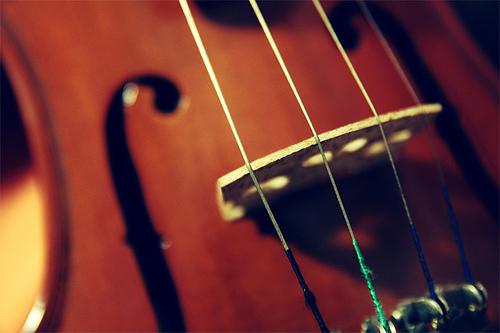 Pourriez-vous apprendre à jouer du violon ?... Maintenant ?