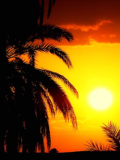 Combien de soleils se coucheront avant que les hommes ne comprennent ?