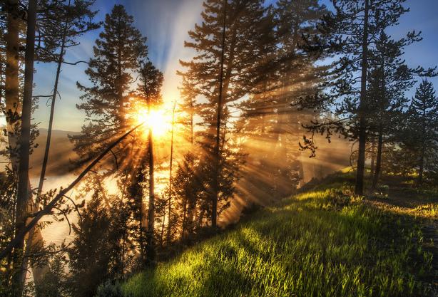 Commencer en douceur, comme un lever de soleil dans la brume d'un matin calme
