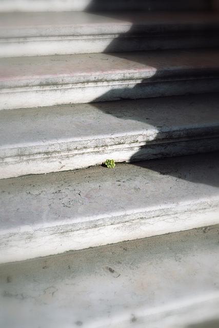 Sur les marches du palais, il y a de l'espoir