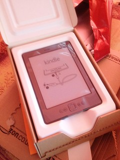 Oh, le beau kindle !